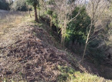 Franja perimetral servei de neteja de boscos i vegetació de Vermican